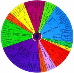 wine aroma wheel